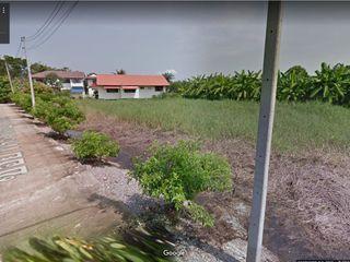 ขายที่ดิน ซอยพระสาครบุรานุรักษ์ (งิ้วราย2) นครชัยศรี 334 ตาร