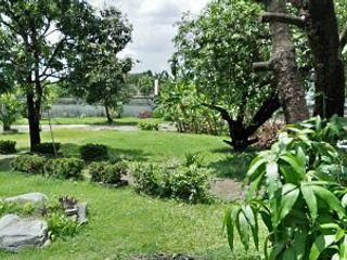 Rent land 200 sq.wah-1 Rai ให้เช่า 200 ตรว-1 ไร