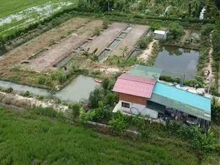 บ้านพร้อมที่ดิน 2 ไร่ 2งาน บ้านสวนเกษตร