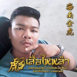 รูปโปรไฟล์ของ Chaiya Jongpaisan