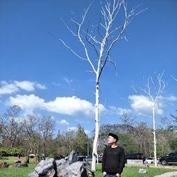 รูปโปรไฟล์ของ Rakzart Treesorn