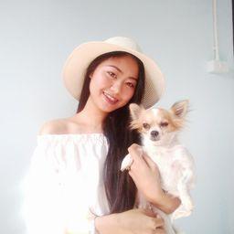 รูปโปรไฟล์ของ chi wawa family dog