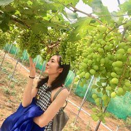 รูปโปรไฟล์ของ Siripat Pangwongsa