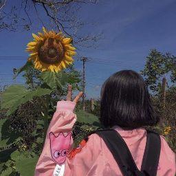 รูปโปรไฟล์ของ angel_no _angie