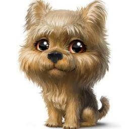 รูปโปรไฟล์ของ Petcutie