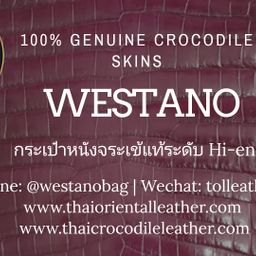 รูปโปรไฟล์ของ Thai Oriental Leather